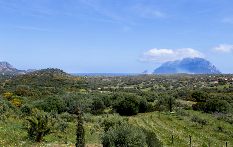 Продажа дома S1 в Мурта Мария, Сардиния (38)