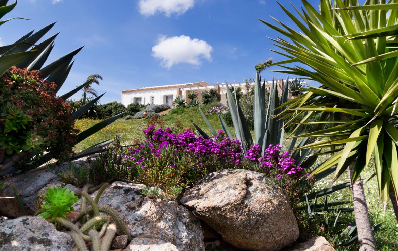 Продажа дома S1 в Мурта Мария, Сардиния (4)