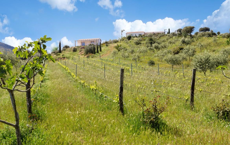 Продажа дома S1 в Мурта Мария, Сардиния (45)