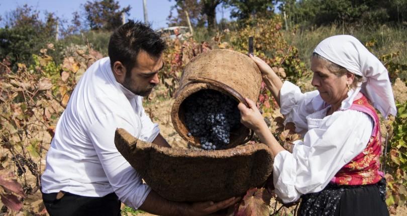 Сардиния – идеальное место для винного туризма