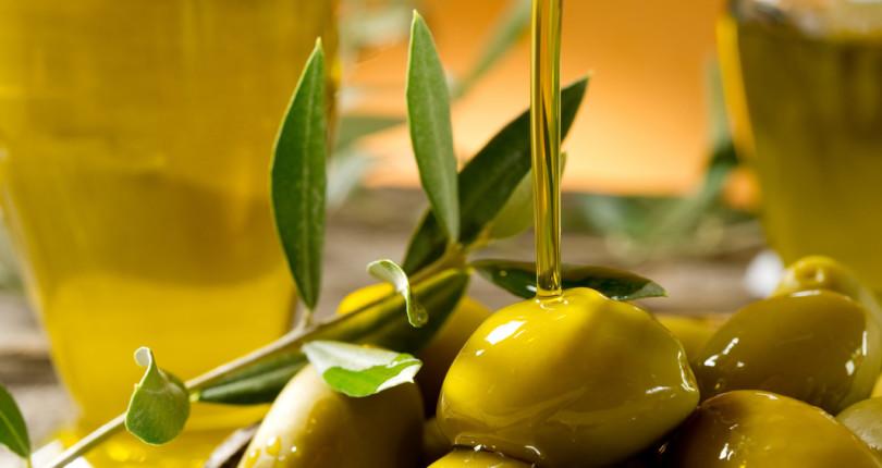 Дегустация оливкового масла, озеро Гарда