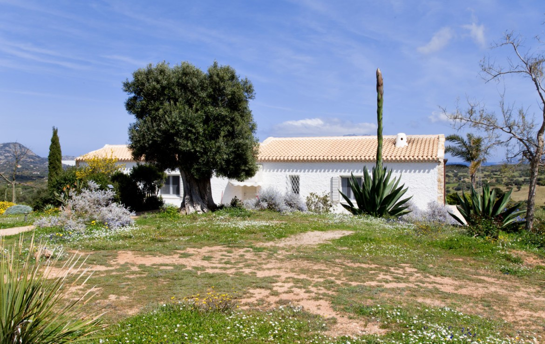 Продажа дома S1 в Мурта Мария, Сардиния (49)