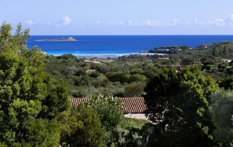 Аренда виллы Y1, Пунтальдия, Сардиния (1)